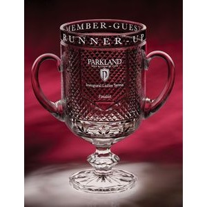 "10.5"" Diamond Cup Crystal Trophy"